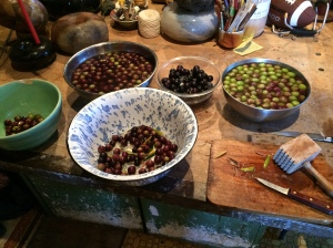 Sorting Olives by Ripeness